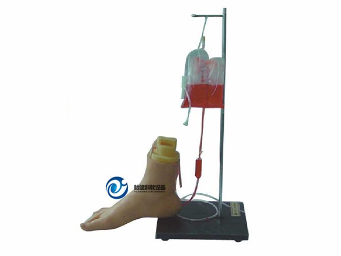 下肢足部静脉注射仿真模型