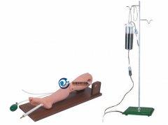 骨穿刺及股静脉模型