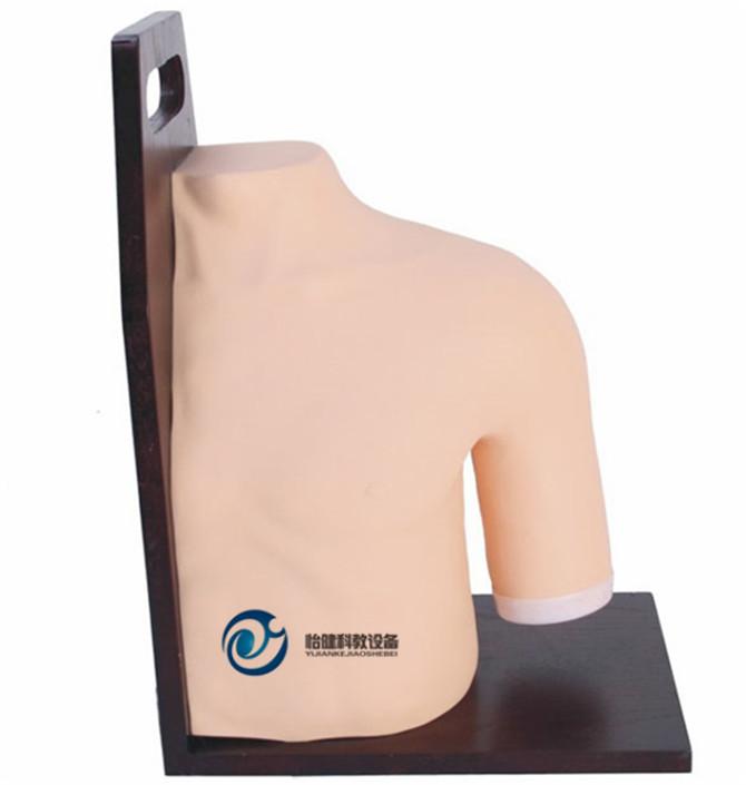 肩关节腔内注射模型