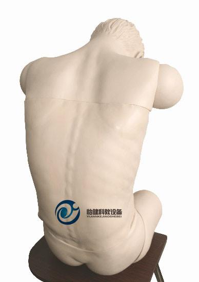 高级综合穿刺术技能训练模拟人