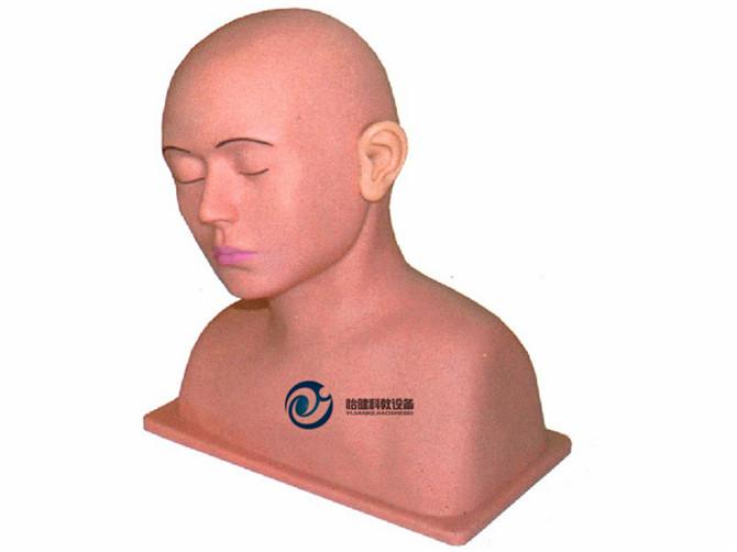 高级耳冲洗训练模型
