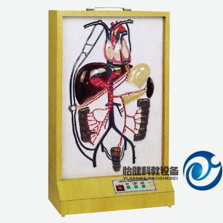 电动门静脉侧支循环万博manbet官方